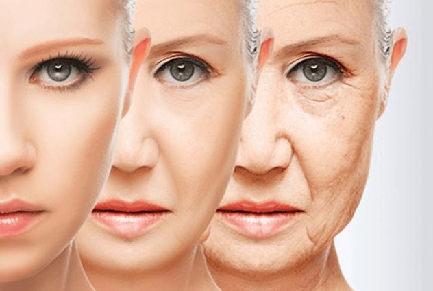 人體各器官的衰老時間比預想中要早得多